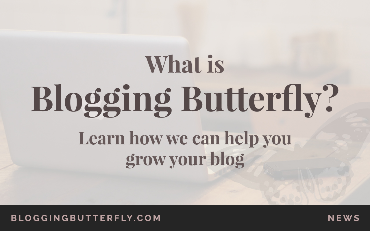 what-is-blogging-butterfly