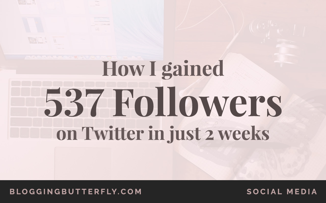 How I Went From 0 to 537 Twitter Followers Before My Blog Launch